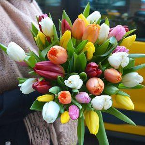 buy-tulips-barcelona