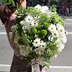 flores-silvestre-campo