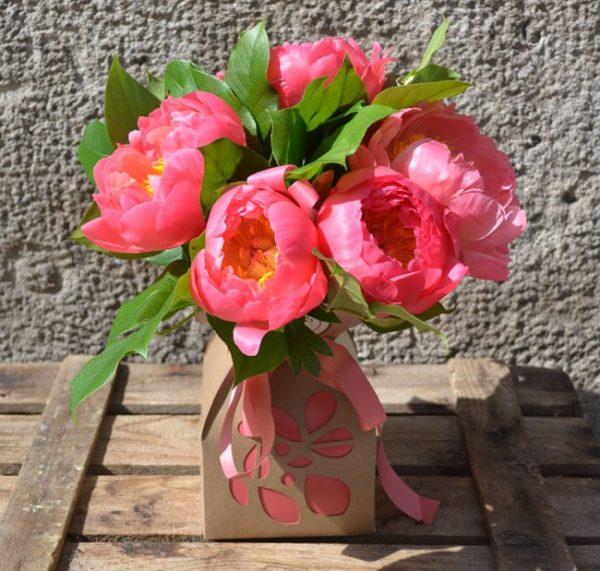 peony-flowers-barcelona
