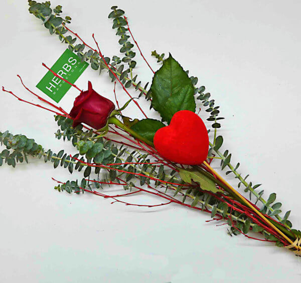 send-rose-valentine-day-barcelona