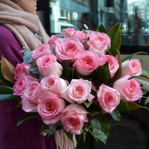 soft-pink-roses