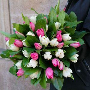 soft-tulips-barcelona