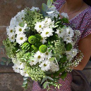 white-daisies-flowers