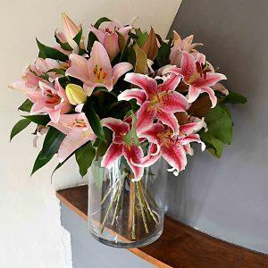 pink-lilies-barcelona