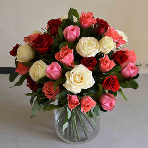 soft-roses-barcelona