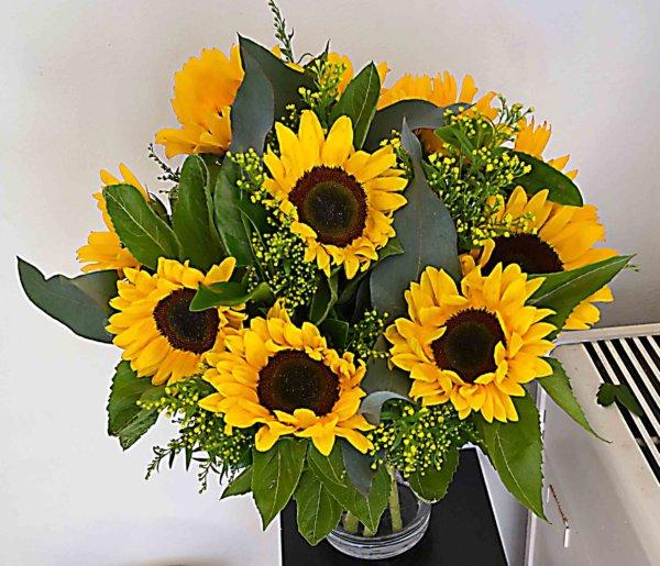 sun-flower-barcelona