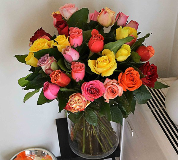 mixed-colour-roses