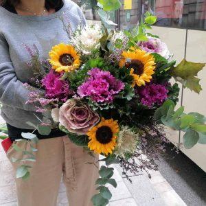 sunflower-coliflor