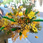 yellow-dry-flowers-barclona