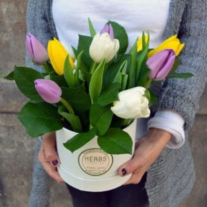 tulips-in-box