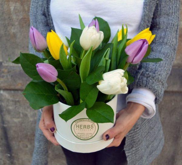 tulips-in-box