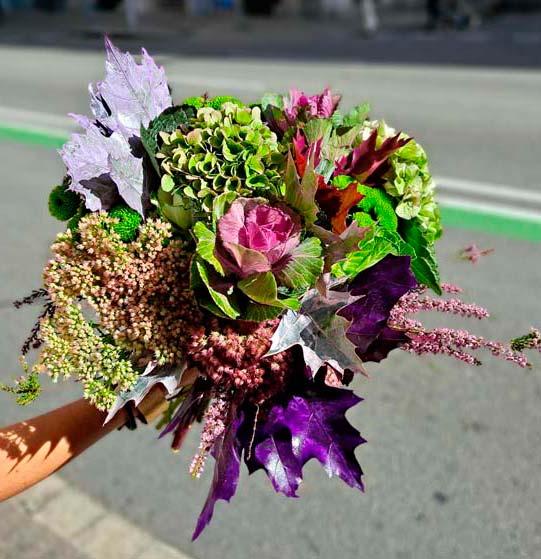hydrangea-flowers-barcelona
