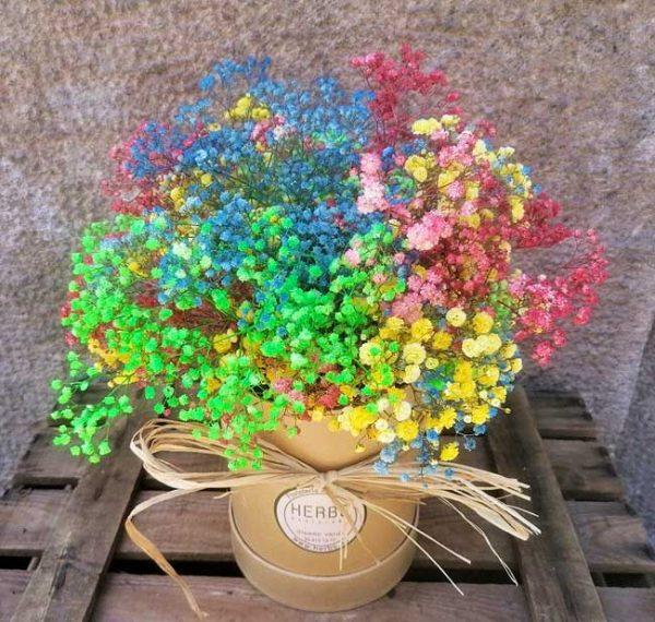 flower-box-gypsophile