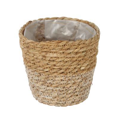 plant-basket
