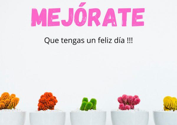 flower-message